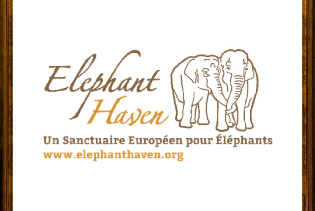 Des lieux sûrs pour les éléphants en Europe aussi